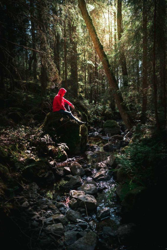 TravelFitter Hiking in der Natur